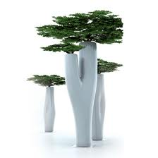 ... growing house plants. They provide excellent growing conditions for