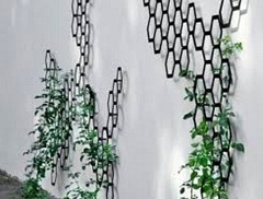 indoor trellis