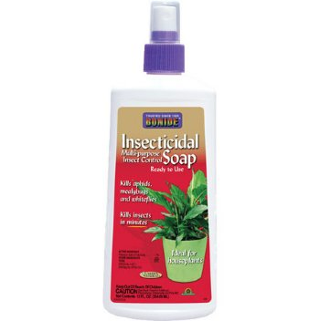 Insecticides and Pesticides For House Plants Insecticide For Plants