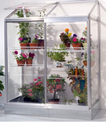 Mini Greenhouses For Indoor Plants