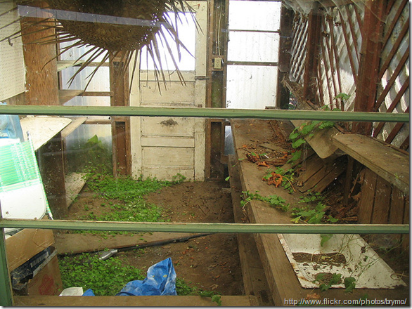old-greenhouse