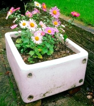 Making a Sink Garden