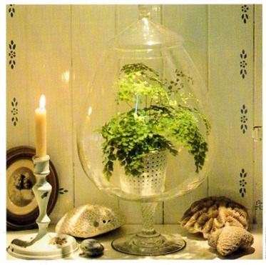 Combining Plants and Ornaments