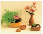 Combining plants with cut flowers