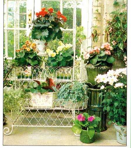 Grouping Flowering Plants Into Displays