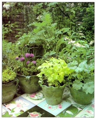 Grouping Pots Outdoors