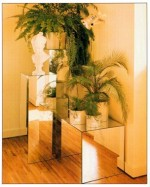 Plant Display Ideas – Reflections using mirrors