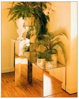 Plant Display Ideas - Reflections using mirrors