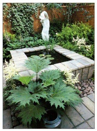 Selecting plants for garden ponds for Good fish pond plants