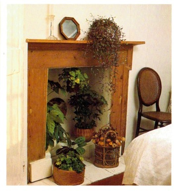 Using Fireplaces To Display House Plants 2