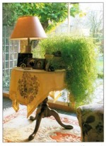 Using Occasional Tables To Display House Plants