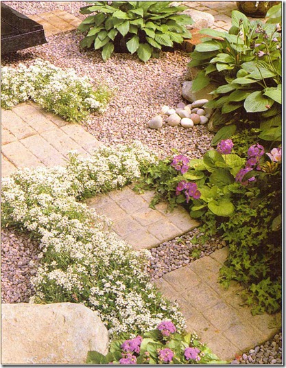 plants-for-between-patio-paving