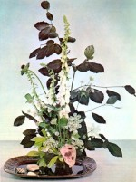 Arrangements Using Wild flowers