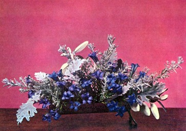 Arrangements With Grey And Silver Foliaged Plants