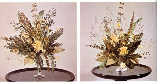Ferns, Mosses And Lichens For Dried Displays 2