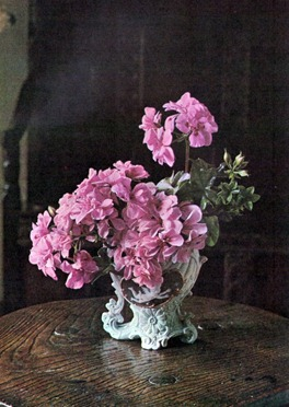 Flower Arranging Using Geraniums 2