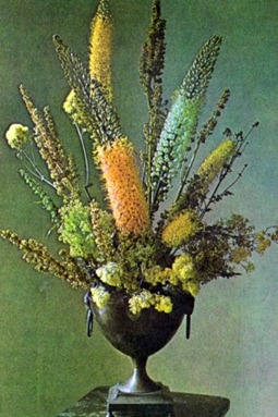 Flower Arranging With Eremurus (Fox-Tail Lily)