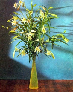 Flower Arranging With Lilies 2