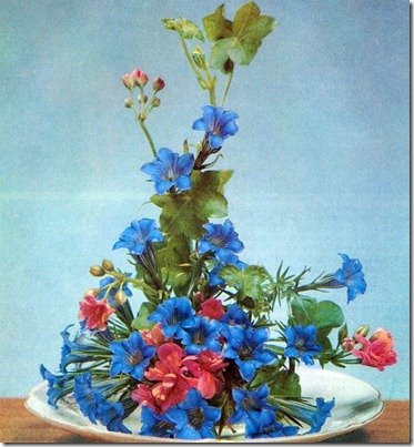 Flower Arranging With Rock Plants