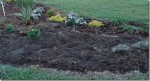 Sites and Soils For Hardy Perennials