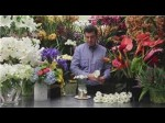 Variations On The Daisy Theme In Floral Arrangements