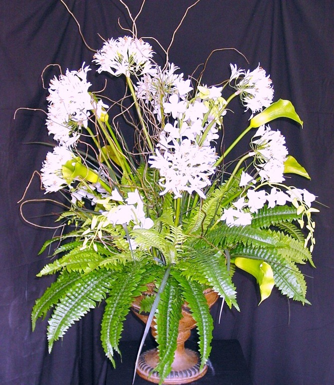 Foliage Plants And Ferns For Arrangements