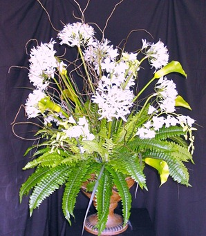 foliage plants and ferns for flower arrangements