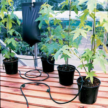 greenhouse-watering-system
