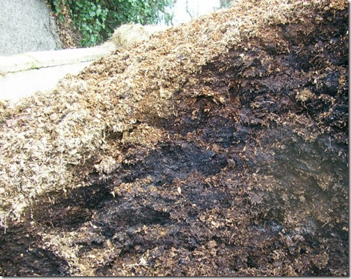 soil for shrubs and climbers