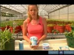 Fertilizers For Indoor Plants