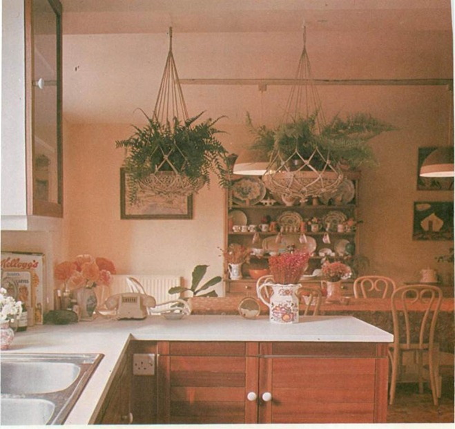 kitchens and plants