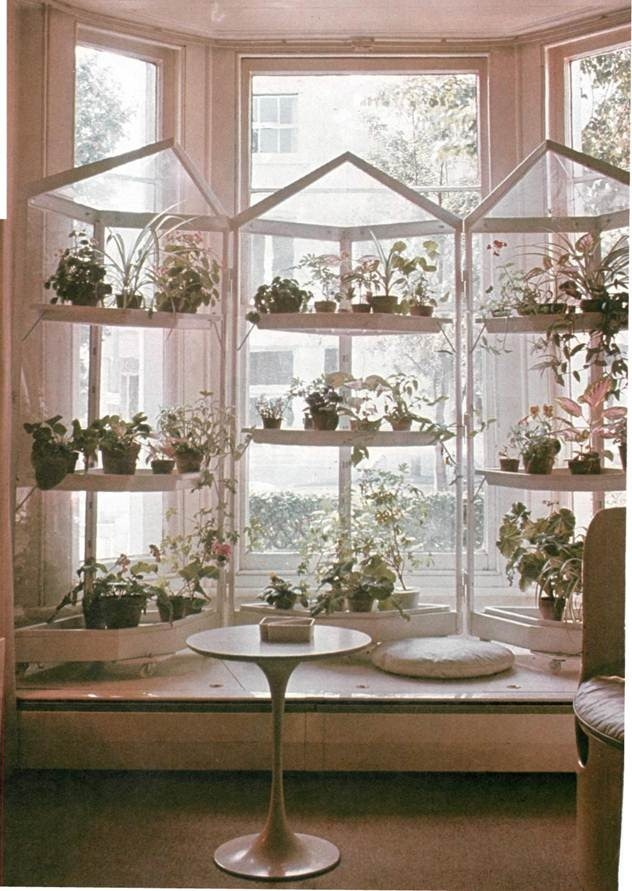 groupiong plants using shelving