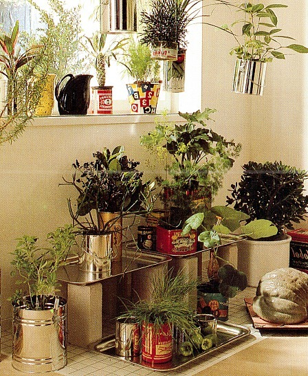 Making Your Own Plant Pots